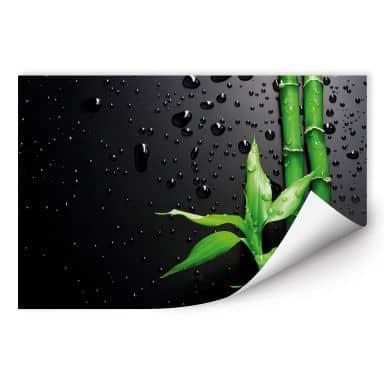 Zelfklevende Poster  Bamboo over Black
