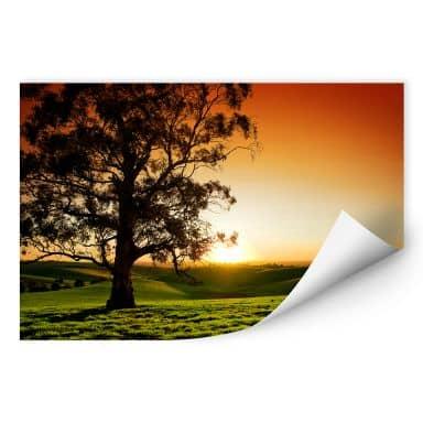 Wallprint W - Sonnenuntergang über den Hügeln