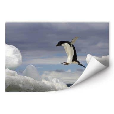 Wall print NG Pinguin Fly