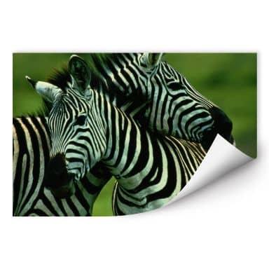Wallprint W - NG Zebra Paar