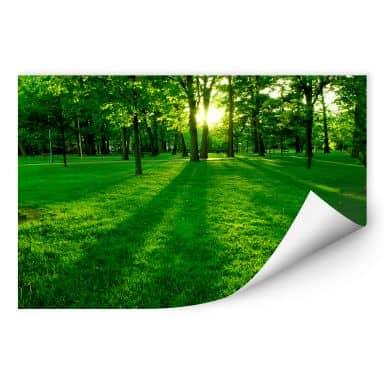Wallprint W - Park im Grünen