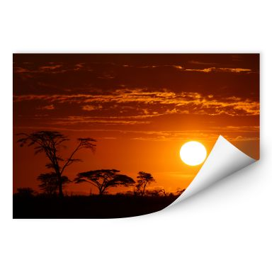 Wall print W - African Steppe