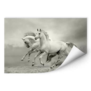 Zelfklevende Poster - Paarden in Galop