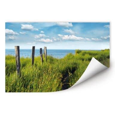Zelfklevende Poster - Way to the Lake