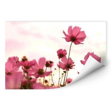 Wall print W - Pink Kosmeen