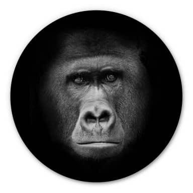 Alu-Dibond Gorilla - Round