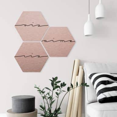 Hexagon - Alu-Dibond-Kupfereffekt - Vis ris aime (3er Set)