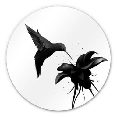 Alu-Dibond round - Ireland - Hummingbird