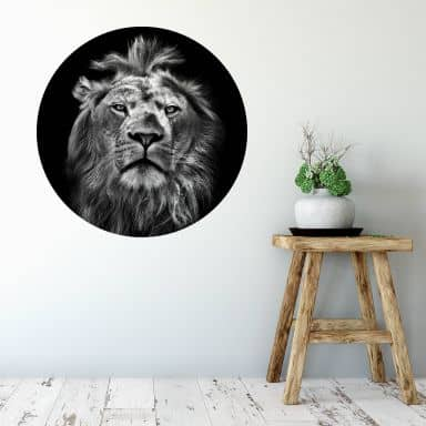 Wall sticker round - Lion