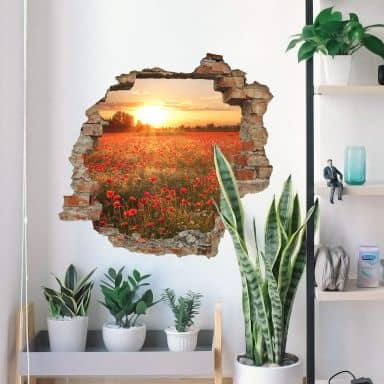 3D wall sticker flowers at sunset