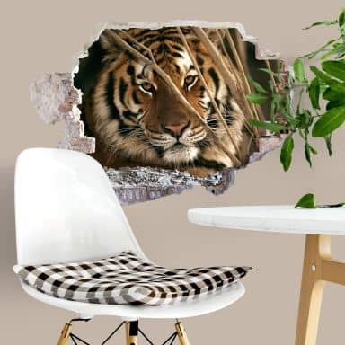 Sticker mural 3D  Tigre du National Geographic