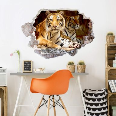 3D wall sticker Two tigers