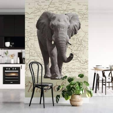 Wild Safari - Photo Wallpaper