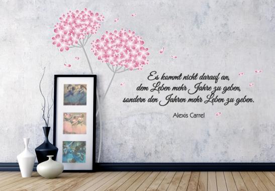 sch ne deko mit zwei hortensien einem zitat von alexis carrel wall. Black Bedroom Furniture Sets. Home Design Ideas