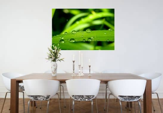 Wallprints - W - Natur 5