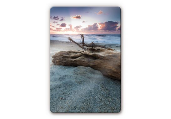 Old tree trunk glass art wall for Tree trunk wall art