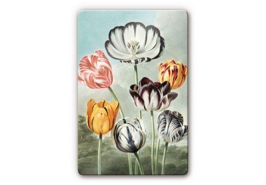 glasbild robert john thornton tulpen k nsterbilder f r. Black Bedroom Furniture Sets. Home Design Ideas