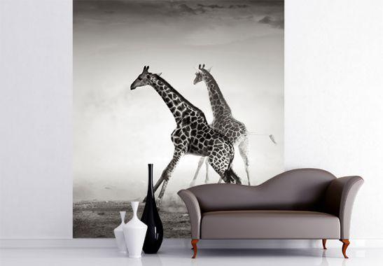 vliestapete die flucht exklusiv aus der wall art kollektion wall. Black Bedroom Furniture Sets. Home Design Ideas