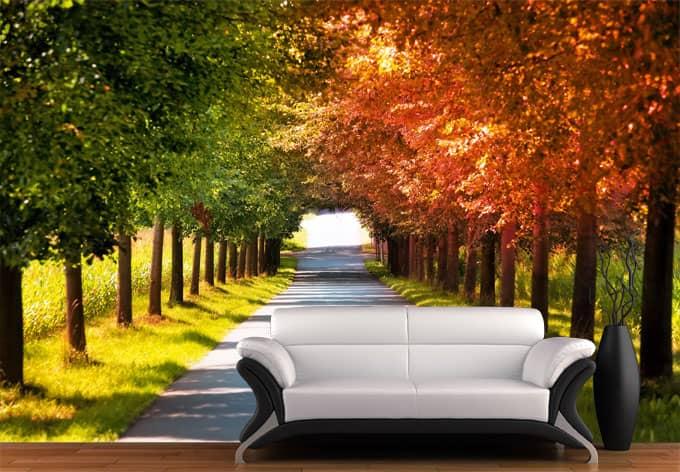 fototapete herbst eine herbstliche allee in gr n und rot wall. Black Bedroom Furniture Sets. Home Design Ideas