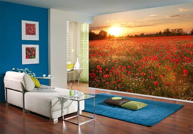fototapete mohnfeld im sonnenuntergang naturmotiv f r ihr zuhause wall. Black Bedroom Furniture Sets. Home Design Ideas