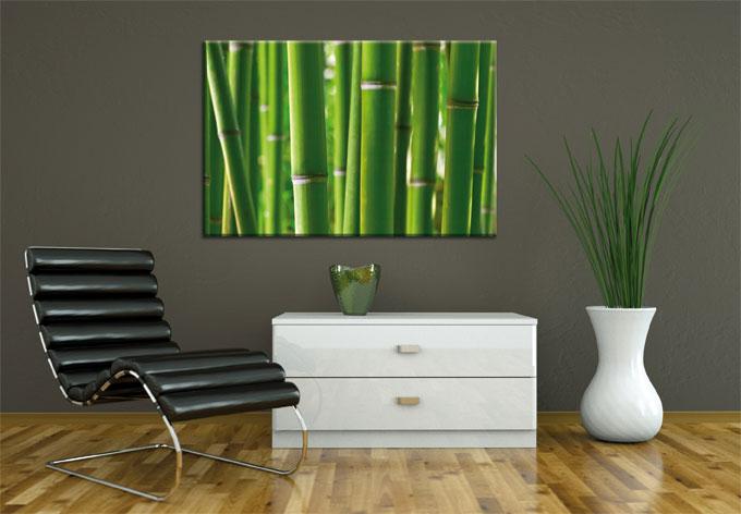 bambuswald ber wandtattoo king kaufen und sparen. Black Bedroom Furniture Sets. Home Design Ideas