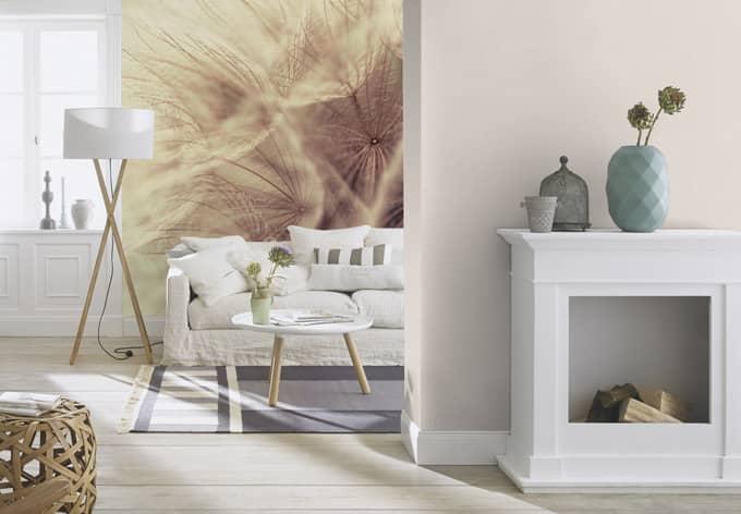 fotobehang paardebloemen close up wall. Black Bedroom Furniture Sets. Home Design Ideas