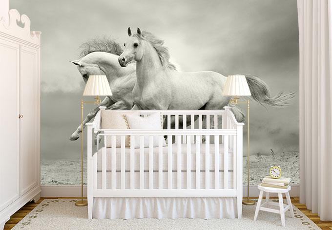 fototapete pferde im galopp von k l wall art wall. Black Bedroom Furniture Sets. Home Design Ideas