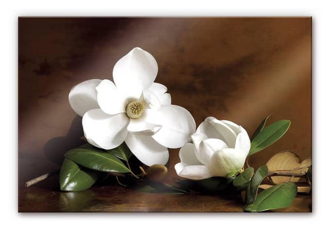 Slaapkamer Wanddecoratie : Magnolia Branch Painting