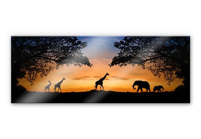 xxl wanddecoratie acrylglas afrika wallartnl