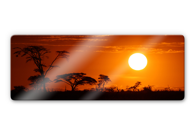 Glasbild afrikanische stepp panorama cooler look f r - Gardinen afrika look ...
