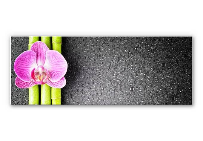 Wanddecoratie Orchidee en Bamboe - Panorama (horizontaal)
