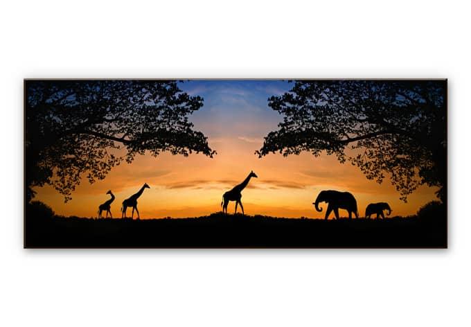 wanddecoratie hdf african sunset panorama wallartnl