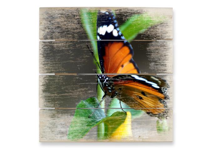 Houten Wanddecoratie Kleine Vlinder - wall-art.nl