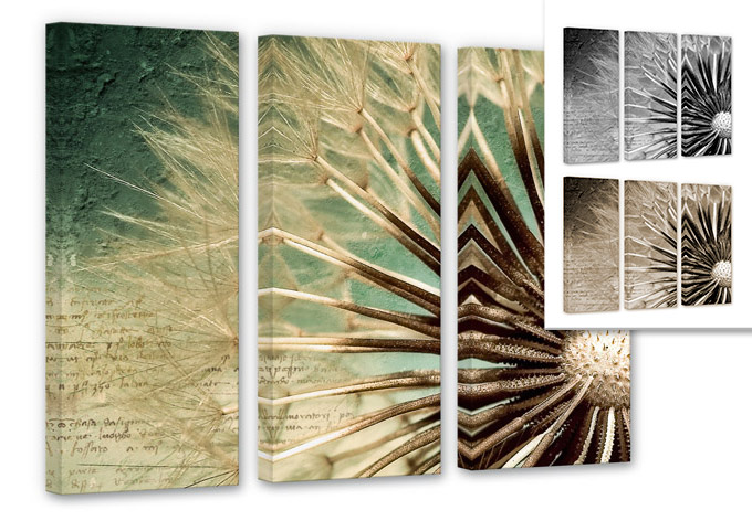 leinwandbild 3 teilig pusteblumen poesie beliebtes motiv als hochwertiger leinwanddruck. Black Bedroom Furniture Sets. Home Design Ideas