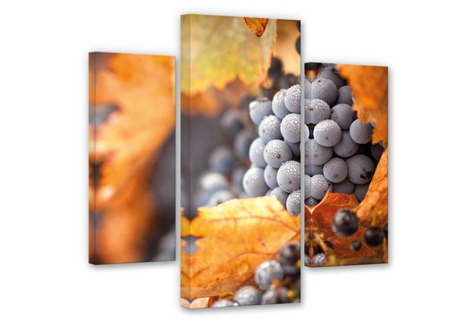 Wine in Autumn Canvas print (3 parts)