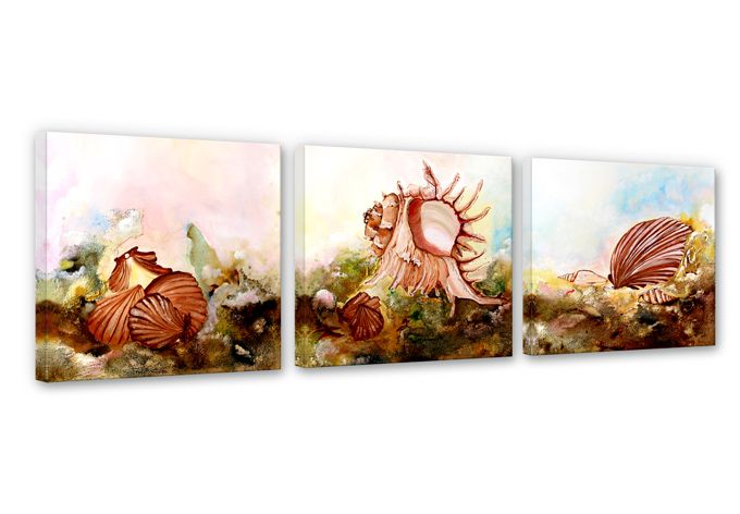 Fedrau - Shellfish 02 Canvas print (3 parts)