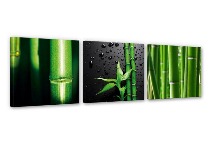 Bamboo over Black Canvas print (3 parts)