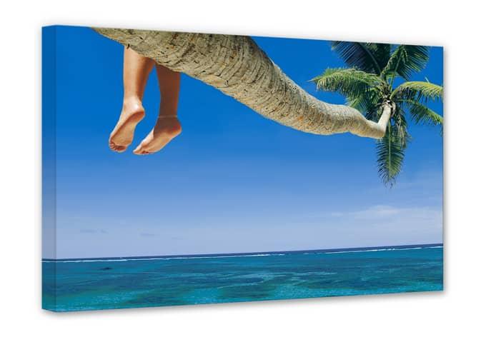 Fototapeten Palmenstrand : Dangling Feet Drawing