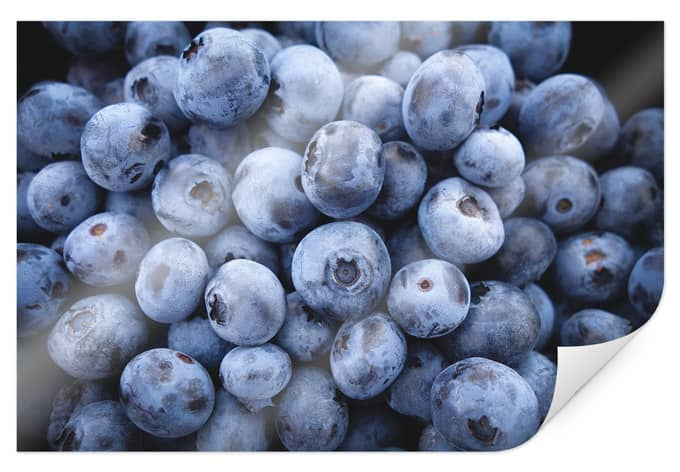Poster blueberries