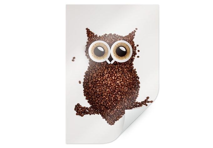Poster Coffee Owl