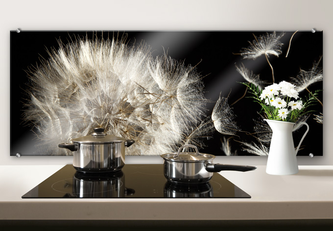 dandelion panorama kitchen splashback wall. Black Bedroom Furniture Sets. Home Design Ideas