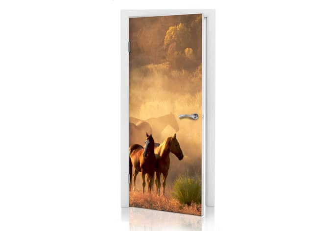poster de porte chevaux sauvages wall. Black Bedroom Furniture Sets. Home Design Ideas