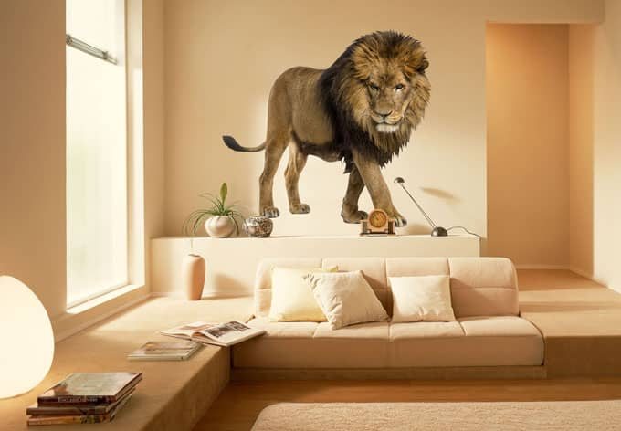 real lion wall sticker wall. Black Bedroom Furniture Sets. Home Design Ideas