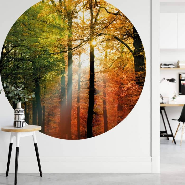 Fototapete Goldener Herbst Wald - Rund
