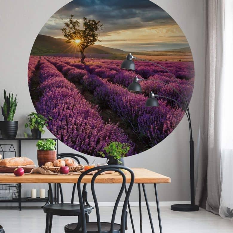 Fototapete - Lavendelblüte in der Provence - Rund