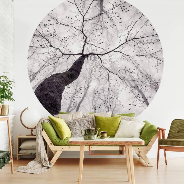 Photo Wallpaper Pavlasek - A view of the treetops