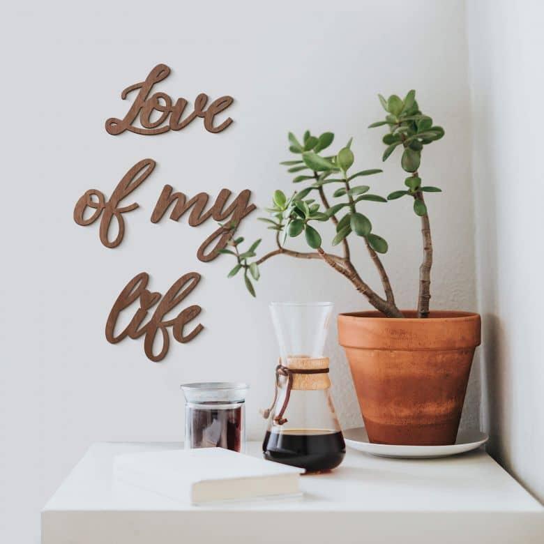 Scritta in legno - Love of my life