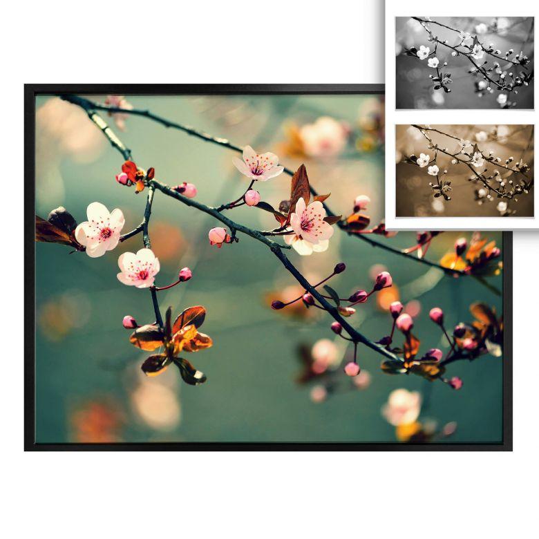 Poster - Éveil du printemps
