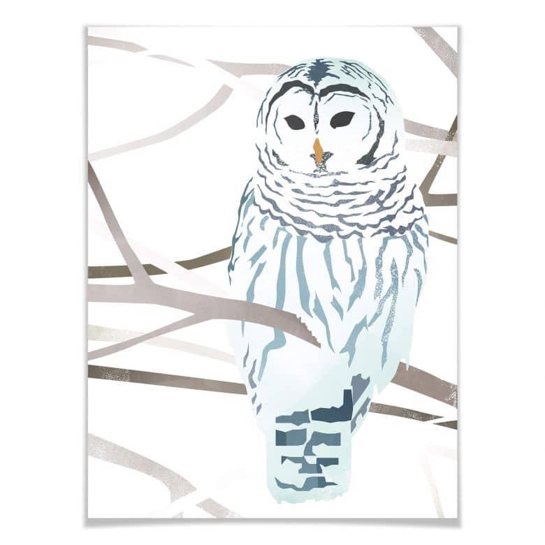 Poster Goed Blauw - Die Schneeeule