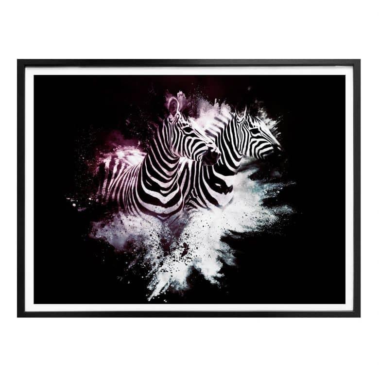 Poster Hugonnard - Wild Explosion: Zwei Zebras